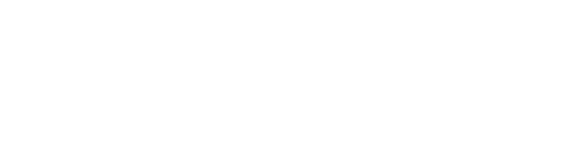 The Hockey Store logo